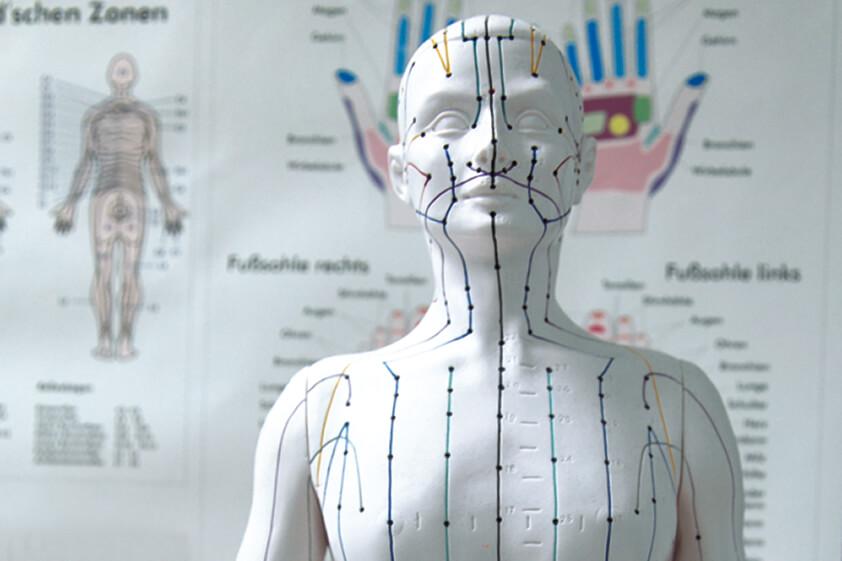Zahnarzt-Wurzen-Klass-Praezision-Akupunktur